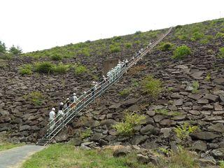昨年の様子(荒川ダム側壁階段)